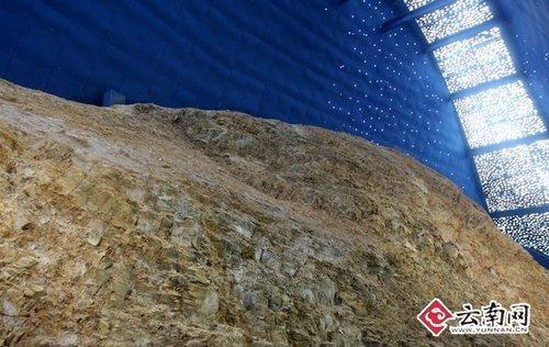 并就澄江动物化石群