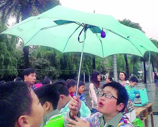 3个小学生设计的太阳能雨伞,雨伞上加装了太阳能电池板见小图。记者 张梁 摄