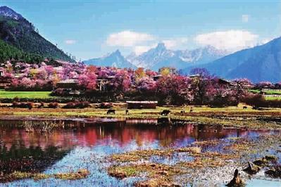 """从川躲线一路向西,沿着北纬30°这条被称为""""中国最美景不雅大道""""进入"""