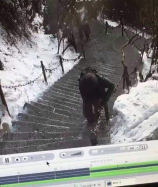 1月25日华山景区视频显示,他于早上8点买了上山的票,9点进的华山景区大门。